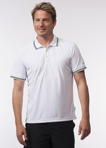 Polo Limited Classic (Knopf)